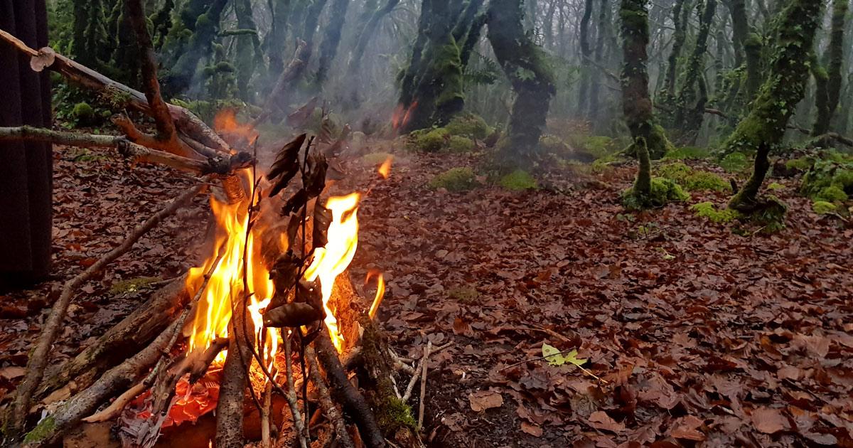 Un magnifique feu d'hiver dans une clairière pour cultiver le feu intérieur